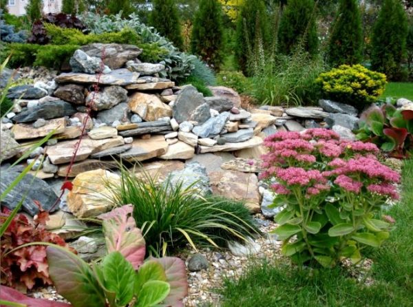 Каменный склон
