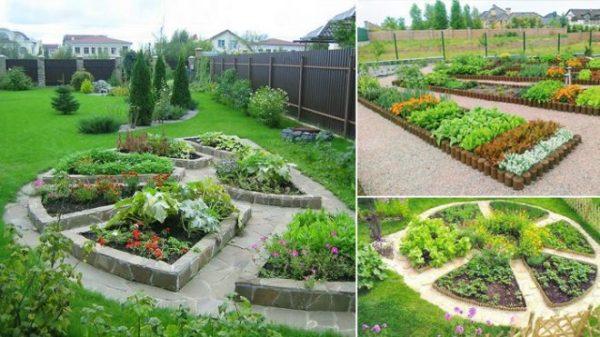 Цветник-огород