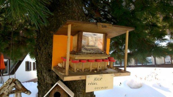 Птичий бар