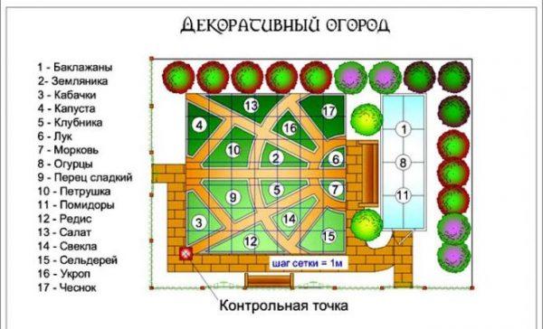 Схема огорода