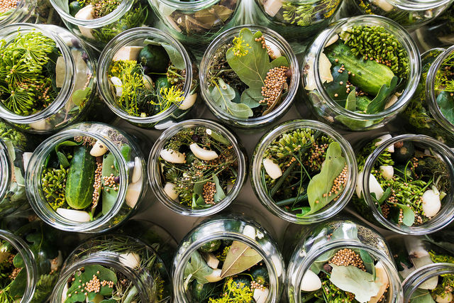 Малосольные огурцы быстрого приготовления – 10 лучших рецептов