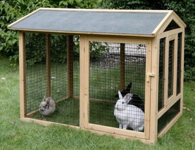 Клетки для кроликов делаем клетку для молодняка