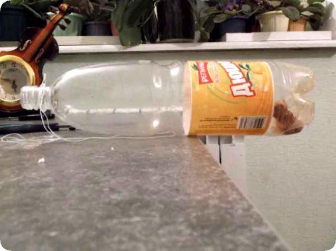 Мышеловки из пластиковых бутылок
