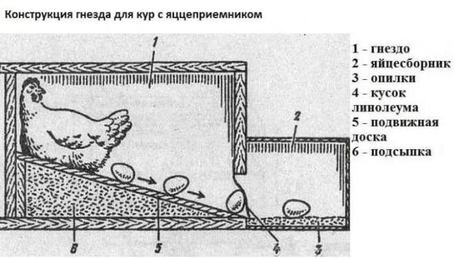 Гнезда для кур-несушек с яйцесборником
