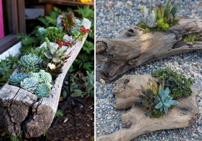 Поделки из коряги в саду фото
