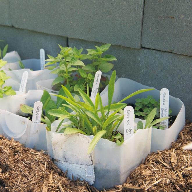 Самоделки из канистр для сада