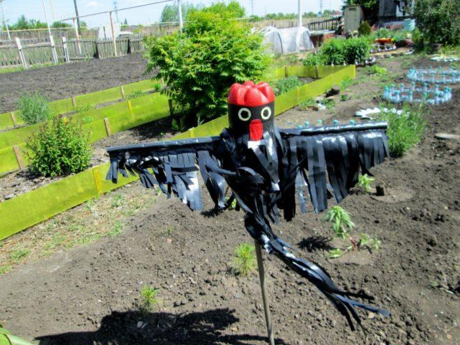Х эффективных способов отпугивания птиц от урожая - мой метод