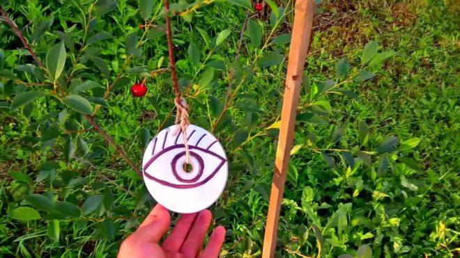 Пять эффективных способов отпугивания птиц от урожая