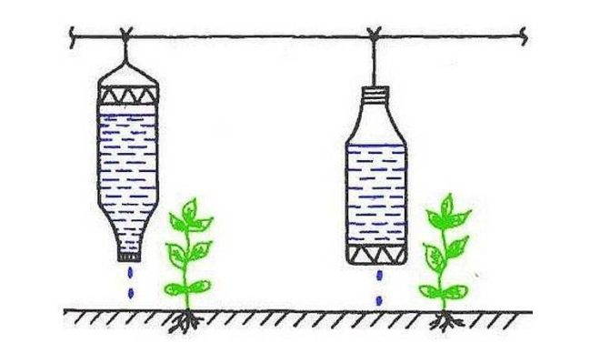 Капельный полив из пластиковой бутылки ? просто и быстро
