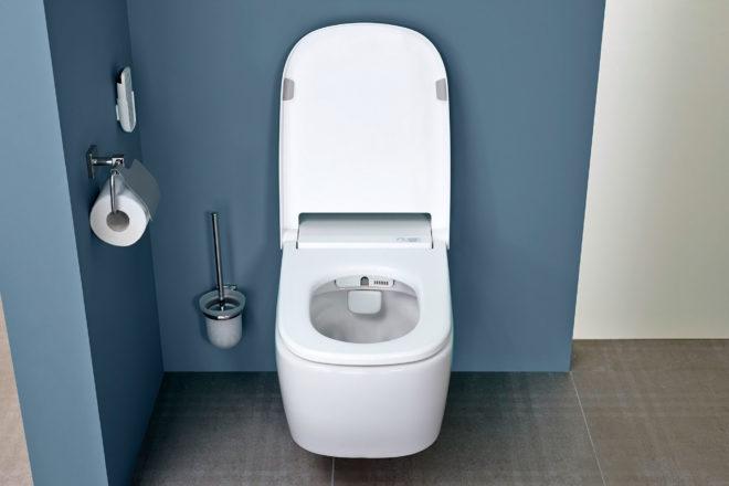 Туалеты в картинках, днем рождения для
