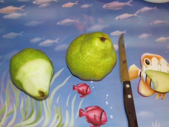 Поделки из овощей и фруктов на тему «Осень» для выставки