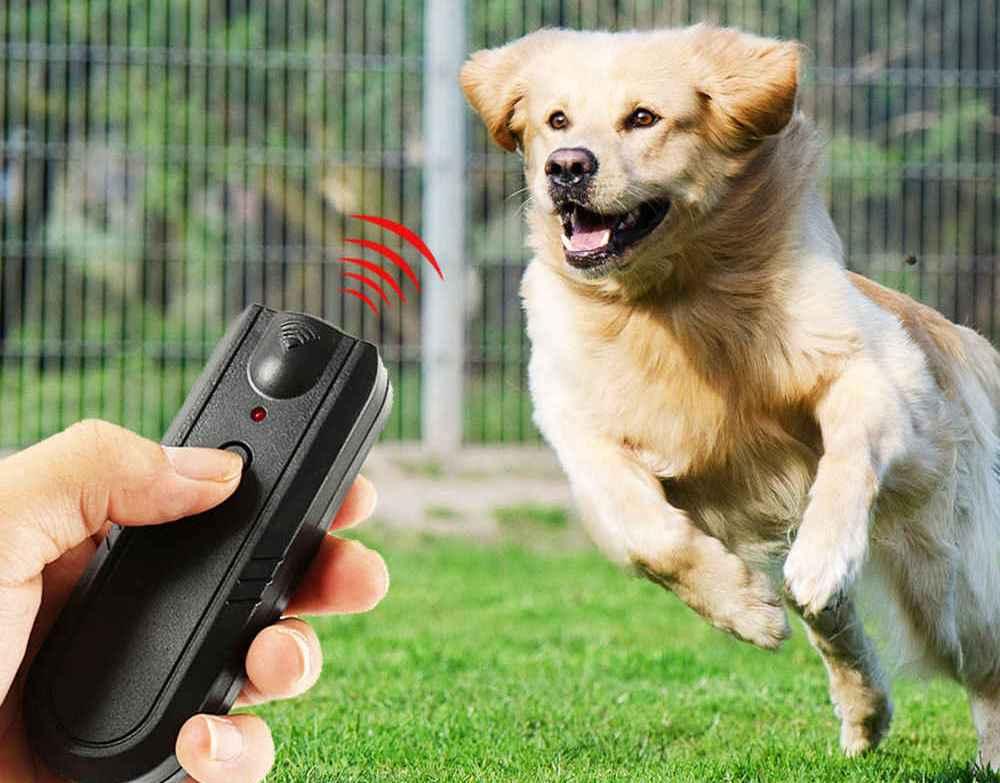 Как собрать мощный отпугиватель собак
