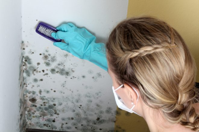 Как и чем покрасить бетонную стену в квартире