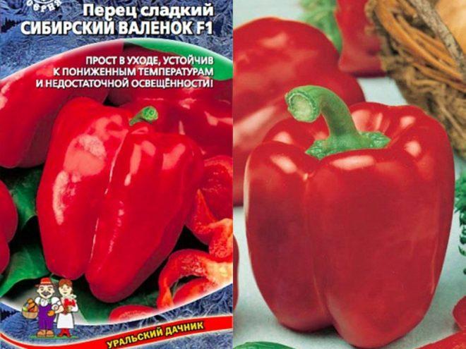 Лучшие сорта болгарского перца для открытого грунта