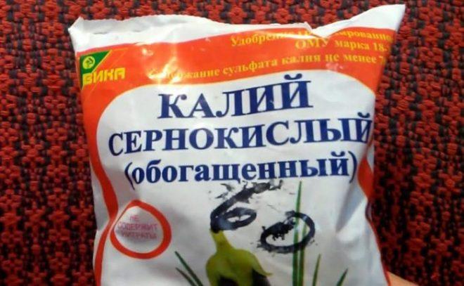 Эффективные подкормки огурцов