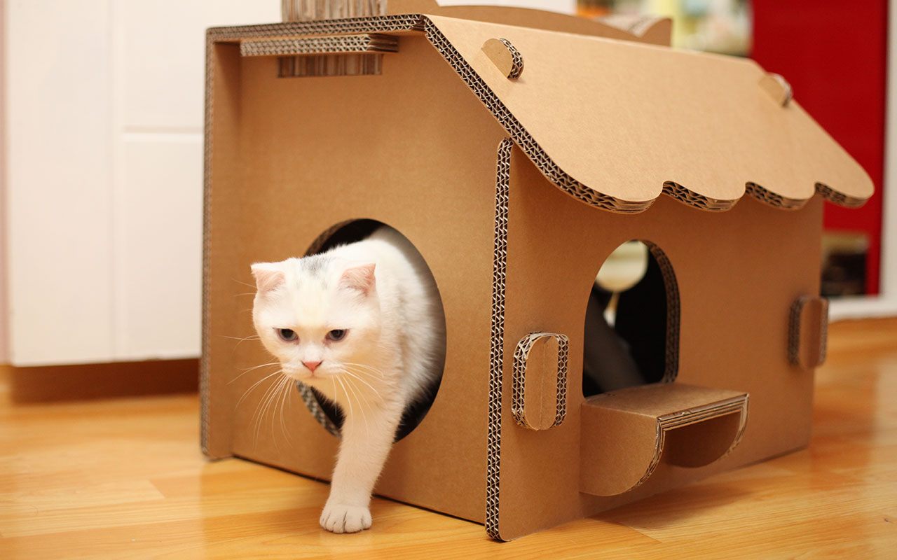 Как из коробки сделать домик для кота? Дом из картона.