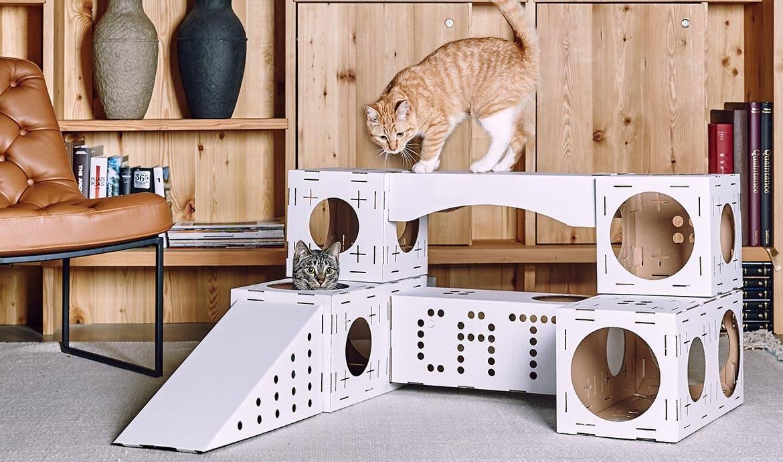 Как из коробки сделать домик для кота? Из коробок.