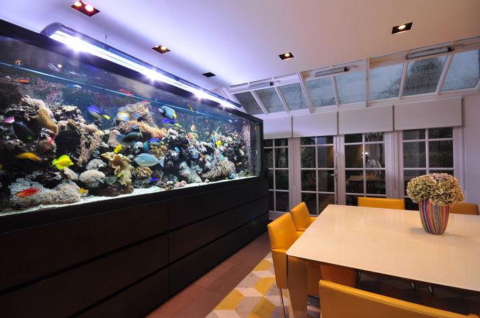 Aquarium in dining