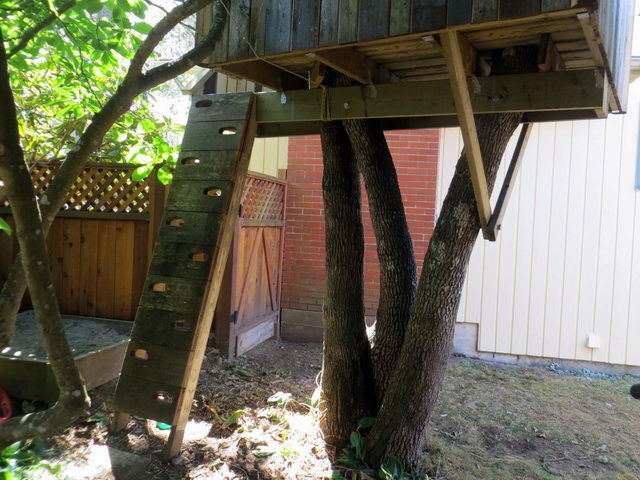 Как сделать домик на дереве одному 71