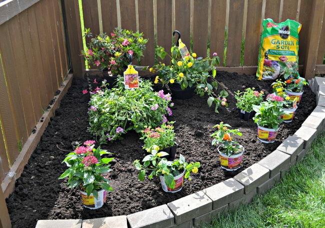 как правильно посадить клумбу с цветами инструкция и фото