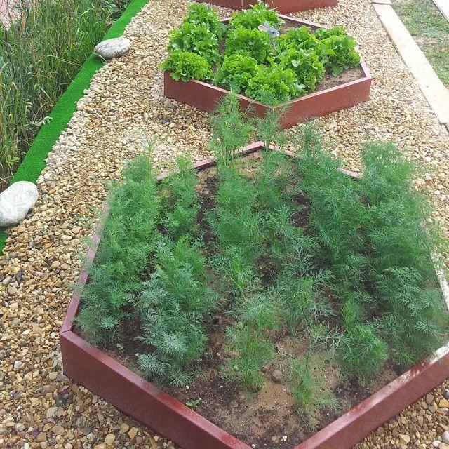 Фото оформления сада своими руками фото