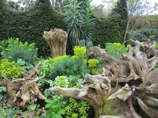 Как сделать рутарий своими руками? Сад корней