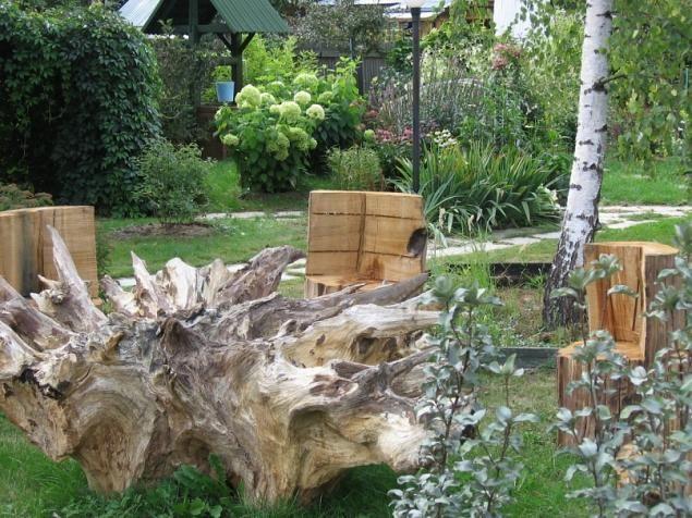 Сад корней своими руками 21