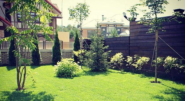 Огорода а если вы начинающий садовод